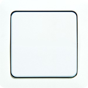 Wippe, Zentralplatte, für Schalter, Taster und Taster BA 1fach