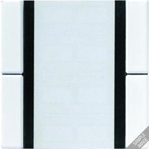 A 2072 NABS CH, Tastsensor Standard, 2fach, Schriftfeld