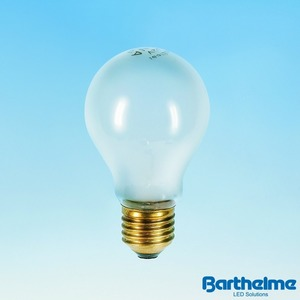 Normallampe NL E27, matt, 24V, 60W mit T-Zeichen, NL02460M