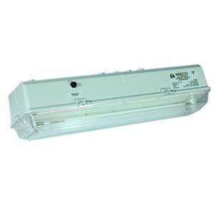 NS8M C/W ISO7010 GERMANY, Einzelbatterieleuchte mit Prüftaster ISO 7010