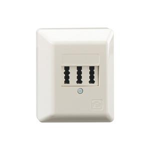TAE 2x6/6 NFF Ap, Telefon-Anschlussdose 3x6-polig Aufputz für 2 Telefone und 1 Zusatzgerät