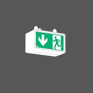 Notleuchte Pendelleuchte LED/4x1,1W, m.AC-Control