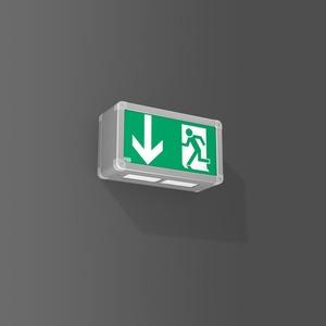 Notleuchte Wandleuchte LED/2x1,1W 250x90x140, m.AC-Contr
