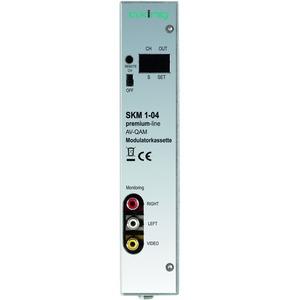 Modulatorkassette, FBAS, S-Video, RGB, YPbPr, DVB-C