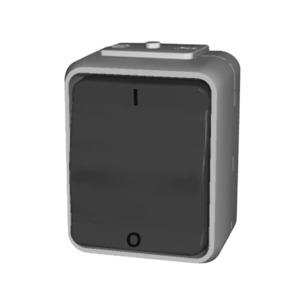 Ausschalter 2-polig 16A AquaTop Schraubklemme licht/basaltgrau