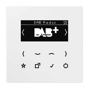DAB LS WW, Smart Radio DAB+, Digitalradio, Display, Sensortasten, UKW, DAB+