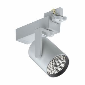 ST711T LED27S/PW9-3000 PSU FR24 SI, TrueFashion Compact - Premium-Weiß mit CRI ≥ 90 - 3000 K - elektronisches Betriebsgerät, schaltbar - Ausstrahlungswinkel 24° - Silber - Farbe: Silber