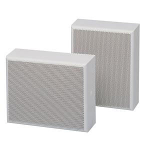 Gehäuselautsprecher, 45/20 W, 100 V, 2-Wege-System