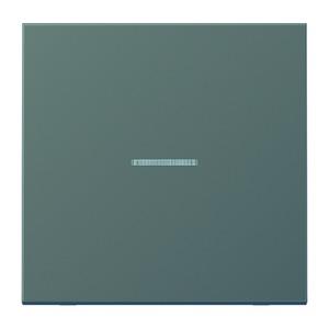 AL 2990 KO5 AN, Wippe, Linse, Lichtleiter, für Wipp-Kontrollschalter, Tast-Kontrollschalter, beleuchtbare Taster und Taster BA 1fach Tasterstellung und Mittenstellung