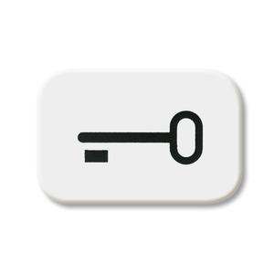 2525 TR-214, Tastersymbol, alpinweiß, SI/Reflex SI, Abdeckungen für Schalter/Taster