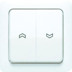 5561-5 P, Wippe, Symbole, Zentralplatte, für Jalousie-Wippschalter, ...