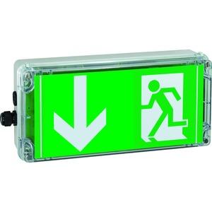 1 2191 020 003, Ex-Rettungszeichenleuchte (einzelüberwacht) für Zone 1/21EXIT VCG-S, Pfeil 6h (gemäß DIN 4844), 1 x M20, 1 x M20 Schraubverschluss