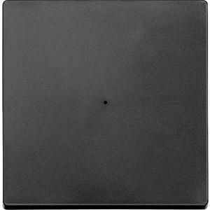Wippe für Taster-Modul 1fach, anthrazit, System M