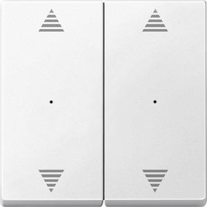 Wippen für Tastermodul 2fach mit Aufdrucken Pfeile Auf/Ab, polarweiß, System M