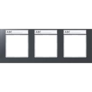 AC 5830 BFNA ANM, Rahmen, 3fach, Schriftfelder 9 x 55 mm, bruchsicher, für waagerechte Kombination