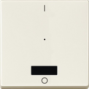 Wippe für Taster-Modul 1fach mit IR (1/0), weiß, System M