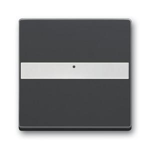 1764 NLI-81, Wippe, anthrazit, carat, Abdeckungen für Schalter/Taster