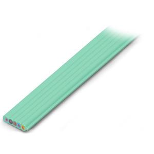 897-251, konfektionierte Flachleitung Eca 5G2,5 mm² PVC 3L + N + PE 0,6 / 1 kV lichtgrün