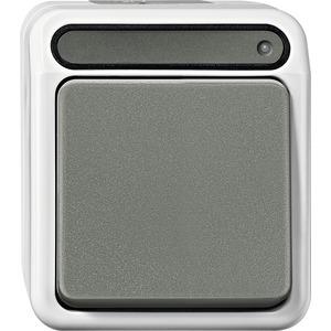 Aus-Kontrollschalter, 2-polig, lichtgrau, AQUASTAR