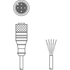 CB-M12-25000S-5GF, Anschlussleitung
