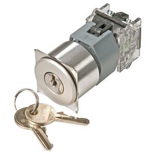 Schlüsselschalter-Vorsatz 2-St. flachen Einbau natur R D35 B+C
