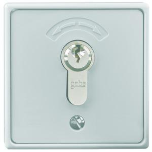4596, Schlüsseltaster Aufputz inkl. Zylinder