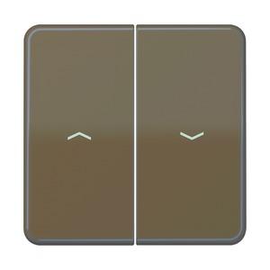 CD 595 PBF BR, Wippe, Symbole für Jalousie-Wippschalter und Jalousie-Taster, CD 595 PBF BR