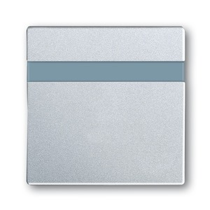 6815-83, Busch-Komfortschalter Bedienelement, alusilber, future linear, Bedienelemente für Bewegungsmelder/Komfortschalter