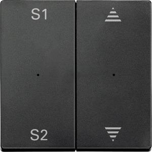 Wippen für Taster-Modul 2fach (Szene1/2, Pfeile Auf/Ab), anthrazit, System M