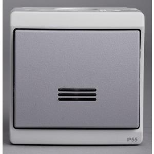 Drucktaster, 10A+Anzeigeleuchte+Lampe, grau, Aufputzmontage IK07 IP55