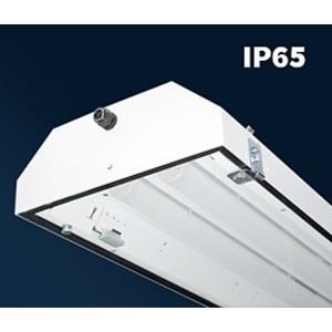 PITBUL-Ex-LED-D-5000-236-4K, IP65