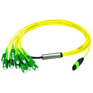 MPO/MTP® APC Aufteilkabel OS2, 12x LC/APC, 5 m