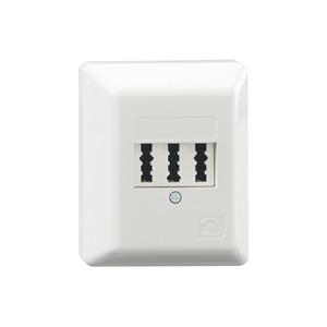 TAE 3x6 NFN Ap rw, Anschlussdose 3x6-polig Aufputz für 1 Telefon und 2 Zusatzgeräte