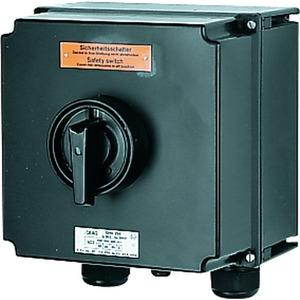 GHG 264 0020 R0001, Ex-Sicherheitsschalter 80 A, 3-polig, 2 HK (Schliesser), VPE=1 Preis per Stück