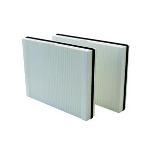 WSG 300, Luftfilter, WSG 300 für WS 300 Flat, 2 x G4