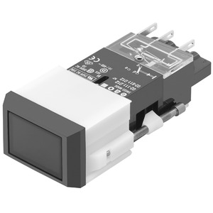 Leuchtdrucktaste I SP 2 U SCH 24x36 Ag