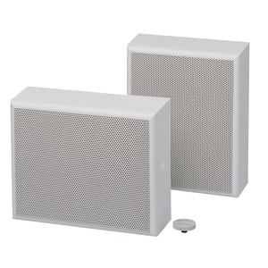 Gehäuselautsprecher, 45/20 W, 100 V, 2-Wege-System, mit eing. L-Regler